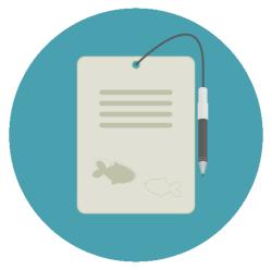 Schnorchel-Blog
