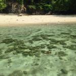 Poda Island Krabi Schnorcheln