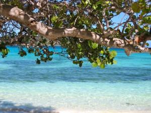 Schnorchelgebiete Barbados