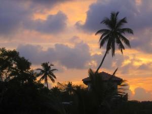 Schnorchelgebiete Sri Lanka