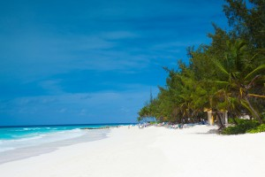 Schnorcheln Barbados