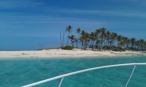 Tauchen Schnorcheln Bahamas-214158_1280