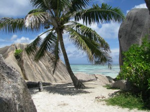 Tauchen Schnorcheln Seychellen