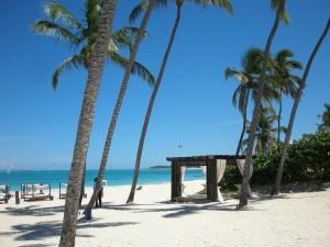 dominican-republic-Schnorchelgebiete Dominikanische Republik