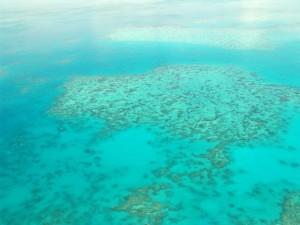 great-barrier-reef-australien